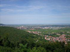 pfalzerwald | ... deutschland rheinland pfalz neustadt an der weinstrasse pfalzerwald