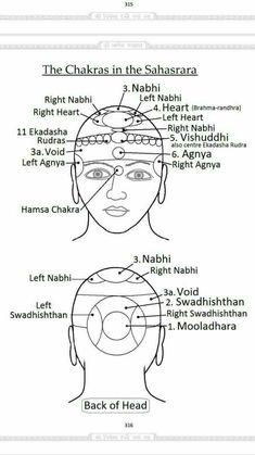 Holistic Tips And Techniques For Women 7 Chakras Meditation, Sahaja Yoga Meditation, Kundalini Yoga, Meditation Music, Rose Croix, Les Chakras, Spirit Science, Tantra, Chakra Healing