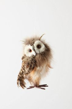 Ah... the fashionable tilt of this owl's head makes it undeniable of the fact that it came from those chic minds at Anthropologie.
