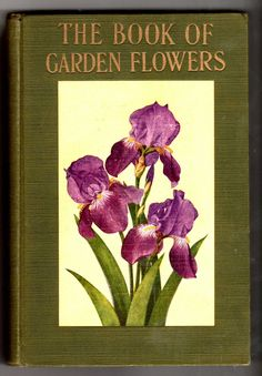 Garden Flowers Illustrated Book 1931 Beautiful Color Art and Black and White.  via Etsy.