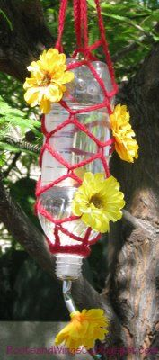Make your own hummingbird feeders using recycled products