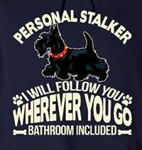 Personal Stalker - I Will Follow You Whereever You Go, Bathroom Included -My life Totally! ❤