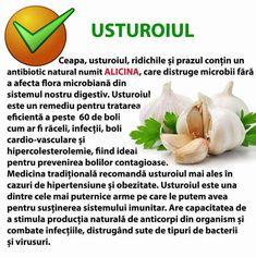 Natural Remedies, Garlic, Health Fitness, Vegetables, Food, Anatomy, Anna, Medicine, Essen