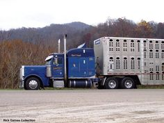 blue cattle trucks | New 2010 Peterbilt 389 owned by Begley Lumber, London, Ky. taken 3-25 ...