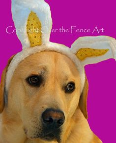 Dog Art Animal Art Easter Greeting Card Yellow by overthefenceart
