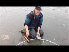 How to dipnet in Alaska. She catches a salmon in this YouTube video.  Interesting to watch if you have never dipnetted.