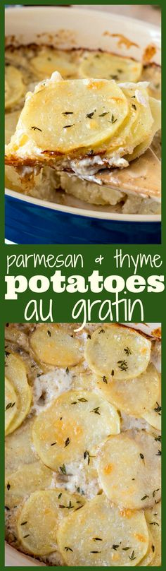 Parmesan & Thyme Potatoes Au Gratin - Thinly sliced russet potatoes layered in a casserole dish with heavy cream, Parmesan cheese, and fresh thyme. This dish is so simple to make but is super impressive for any occasion!
