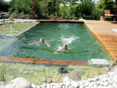 Natural pools have become a phenomenon across Europe over the past decade and are just beginning to catch on in the U.S.