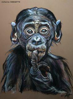 """CAPUCIN, le petit chimpanzé... """"Euh !"""" (Drawing),  30x40 cm przez Catherine WERNETTE Une question : """"Est-ce que je pourrais vous plaire ?"""""""