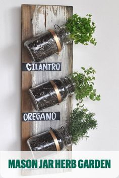 Get amazing indoor gardening ideas, like these herbs in mason jars! Grow your favorite house plants and other greenery inside your home with these ideas. Let's see your DIY indoor garden. Mason Jar Herbs, Mason Jar Herb Garden, Herb Garden Pallet, Pot Mason, Pallets Garden, Mason Jars, Herbs Garden, Garden Path, Glass Garden