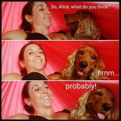 Alice sempre concorda comigo. #shealwaysagrees  #hammocklife #afternoon by @ritashantidmt