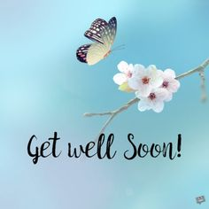 30 Best Get Well Soon Images Get Well Soon Get Well Get Well Soon Quotes