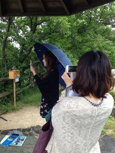 Twitter / kittynosippo: 写真を撮る美女たちを撮る私。 #30jidori http: ...