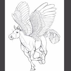 The sketch for my new #Pegasus piece. The wings are a little off at this stage but can you guess the combo? I'll give you a hint: #Murica