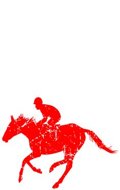 Horse Riding Hobby Outdoors USA Flag Pride Tshirt