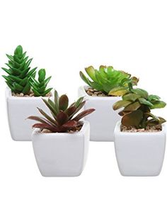 Artificial Decorations 1pc New Diverse Miniature Succulents Simulation Mini Diy Plastic Office Decor Garden Home Delicate Refreshing And Beneficial To The Eyes Festive & Party Supplies