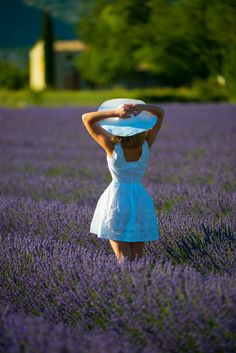 Shooting Lavande Provence Lavendar Painting, Lavander, Picts, Provence, White Dress, Paintings, Ideas, Dresses, Fashion