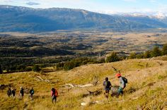 Heading to Chile? Our friends at Conservacion Patagonica are accepting applications (through June 1st) for their volunteer program to help create the future Patagonia National Park.