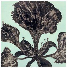 Ralph Kiggell, Black Flower II, 2000, woodcut