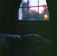 Brian Ferry's windows