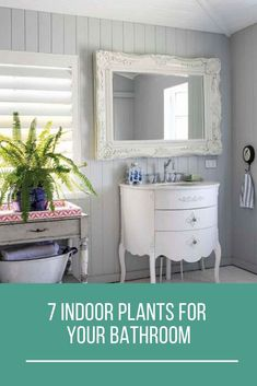 If you want to include an indoor plant or two in your bathroom, these seven plants will work best. Decor Interior Design, Interior Decorating, Best Bathroom Plants, Best Indoor Plants, Beautiful Homes, Living Spaces, Gardening, Green, House