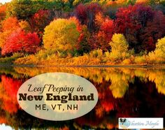 Love the colors of changing leaves in the fall? Plan a trip to ME, NH, or VT and visit some of our favorite places.
