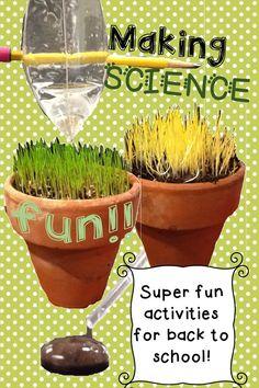 Super fun Scientific Method activities for back to school!