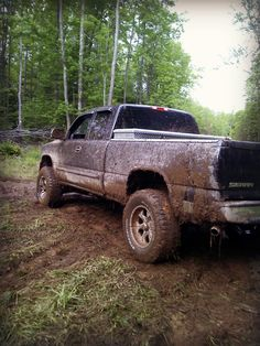 Muddy Chevy, To my son 4 years in a row you have won the most muddies truck, way to go ... I don't think getting the truck stuck in the pond,was the way to win.... now you need to clean the truck and the house from all your fun with your buddies, ps to bad you missed me getting stuck in my jeep...L.O.L. I was able to get out myself ...did not require the neighbor and a tractor...