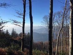 Mountains, Nature, Plants, Travel, Naturaleza, Viajes, Destinations, Plant, Traveling