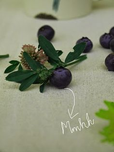 blueberries:) Blueberries, Chutney, Magazine, Happy, Plants, Yogurt, Berries, Berry, Flora