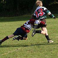 Info sobre el Rugby
