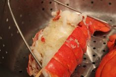 Cathie Filian: How to Steam Lobster Tails