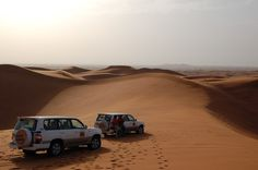 Things to do as a family in Abu Dhabi