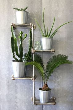 If you own a garden room then a tiered plant shelf is the perfect place to show off ferns and cacti. Choose a chunky industrial-style shelf, like this from Rockett St George, to keep the look contemporary. Find more ideas for an organised and streamlined space on housebeautiful.co.uk
