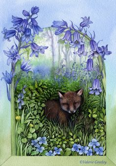 Bluebells ~ Valerie Greeley ~ (and a young fox)