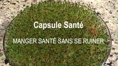 Capsule Santé avec Guylaine Beauchemin