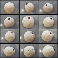 transit of Venus cookies by OBaughman, via Flickr