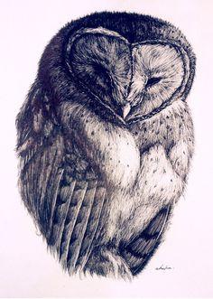 'Madagascar Red Owl' by Akasha Mead