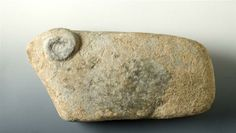 Statuette Zoomorphic, Ram, Israel, Late Chalcolithic, Limestone, [Chalcothic Period in the Near East: 3600-1200 B.C.]