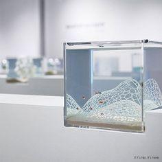 Waterscape Aquarium Exhibit at http://www.ifitshipitshere.com/waterscape-aquariums/