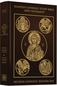 There are free pdf study guides to go with the Ignatius Catholic Study Bible