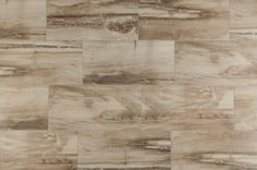 BuildDirect – Italian Porcelain Tile - Petrified Wood Series – Beige - Multi View