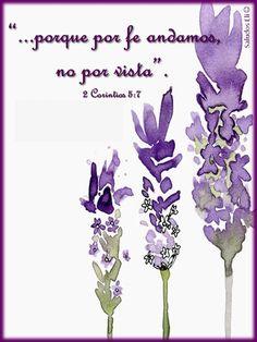 """""""...porque por fe andamos, no por vista"""". 2 Corintios 5:7"""