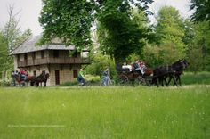 Racconigi castle -Piedmont, Italy - Parco del castello di Racconigi (Piemonte, Italia) http://matrioskadventures.com/2014/05/04/castello-reale-di-racconigi-una-passeggiata-nel-parco/