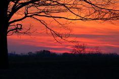 Winter Sunset Silhouette stock photo