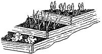 Intensive Gardening Methods, Great Info on Spacing, Containers, Interplanting, etc
