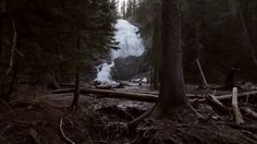 If These Walls Could Walk by Wax Tracks Productions. #waterfall #montana #video