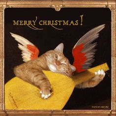 Rosso Fiorentino, Musical Angel-Cat