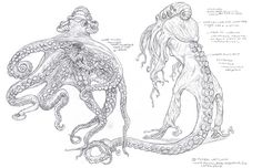 Mythological Creatures, Fantasy Creatures, Sea Creatures, Terryl Whitlatch, Dancing Drawings, Paper Artwork, Animation Reference, Creature Concept, Creature Design