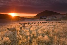10 najpiękniejszych szlaków w Górach Izerskich | Karol Nienartowicz Mountain Photographer